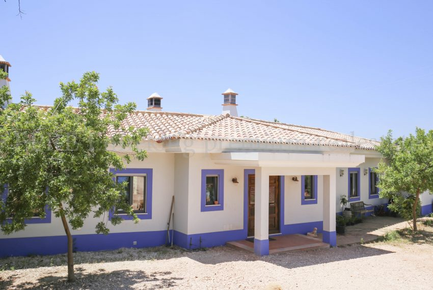 Biological Vineyard 6 Acres Farmhouse Silves Algarve-house-Enneking real estate