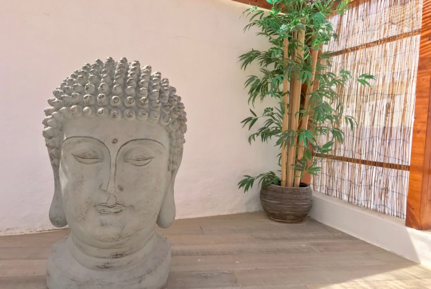 EPRE 141 roofterrace budha